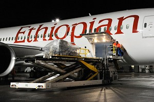 Boeing, Ethiopian Airlines and Seattle Anesthesia Outreach Join Together for 1st 787 Dreamliner Humanitarian Flight