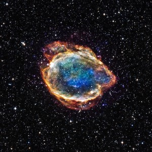 Exploded Star Blooms Like a Cosmic Flower