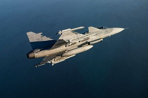 Order for Technical Support for Gripen